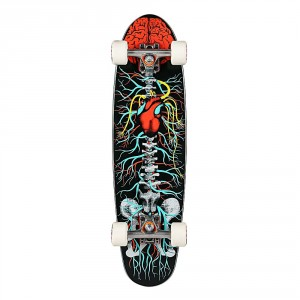 Riviera Anatomy of a Skateboard (8 x 30)